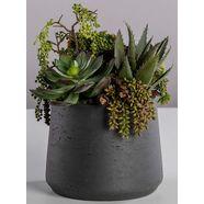 bluetenwerk kunstplant »sukkulenten large« groen