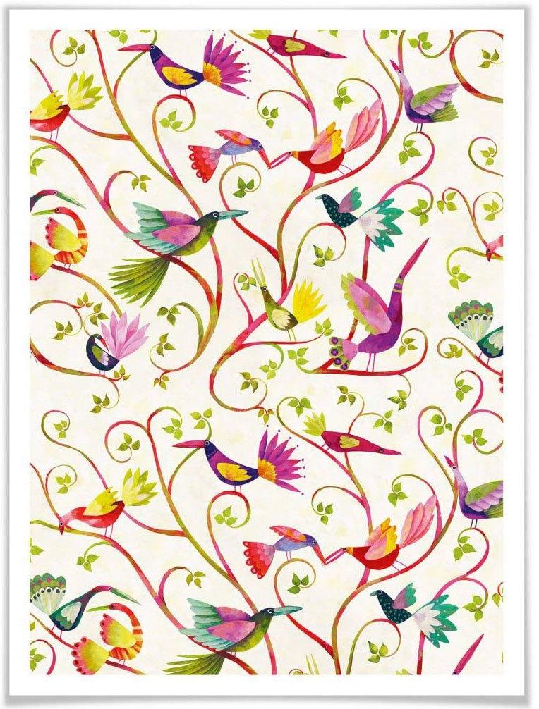 Wall-Art Poster Sprookje artprints prachtige vogels Poster, artprint, wandposter (1 stuk) in de webshop van OTTO kopen