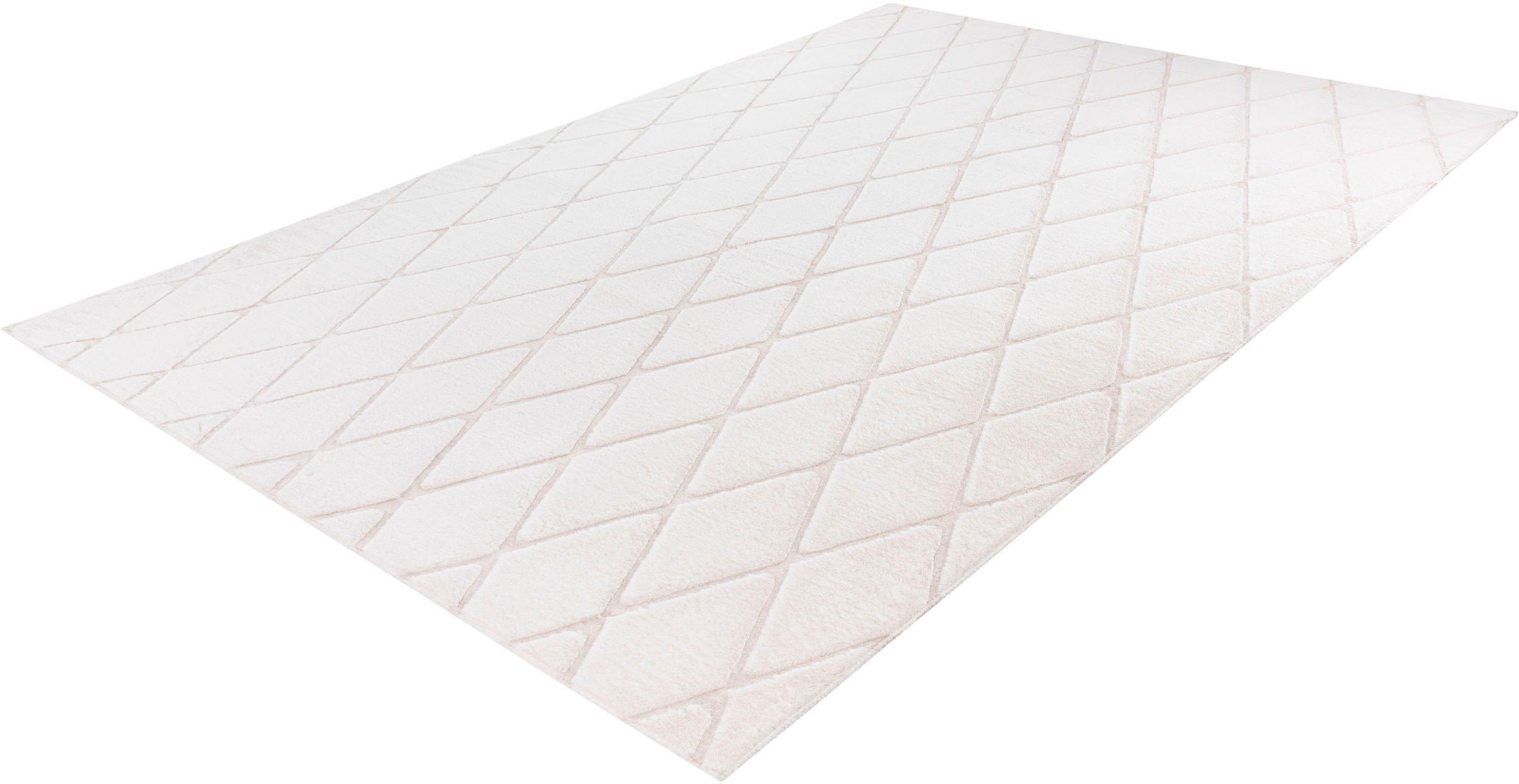 calo-deluxe vloerkleed Jardan-2000 bijzonder zacht door microvezel, woonkamer - verschillende betaalmethodes