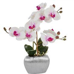 home affaire kunstplant orchidee (1 stuk) wit