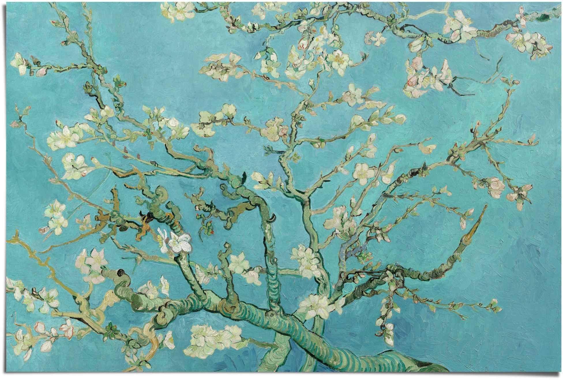 Reinders! poster amandelbloesem Vincent van Gogh - oude meester - beroemde schilderij, bloemen (1 stuk) - verschillende betaalmethodes