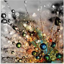 artland print op glas kleurrijke natuur (1 stuk) multicolor