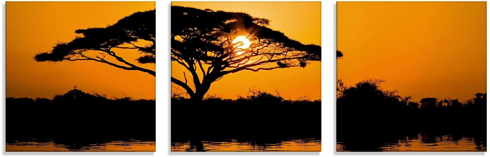 Artland print op glas Acaciaboom bij zonsopkomst (3 stuks) veilig op otto.nl kopen