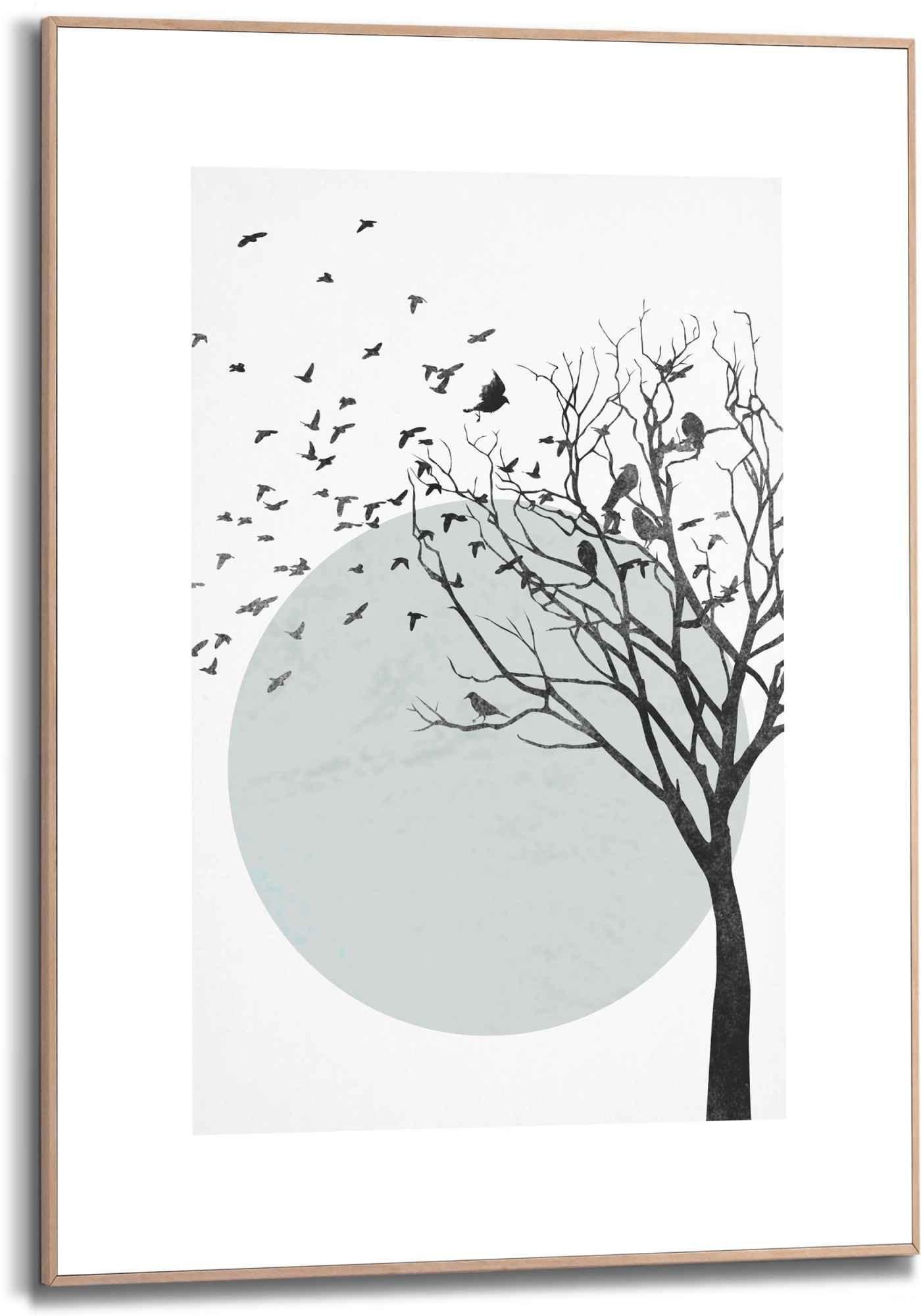 Reinders! wanddecoratie Ingelijste print vogelvlucht boom - kunst (1 stuk) bij OTTO online kopen