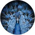 reinders! artprint wandbild pfau tiermotiv - vogel - nahaufnahme - modern (1 stuk) blauw