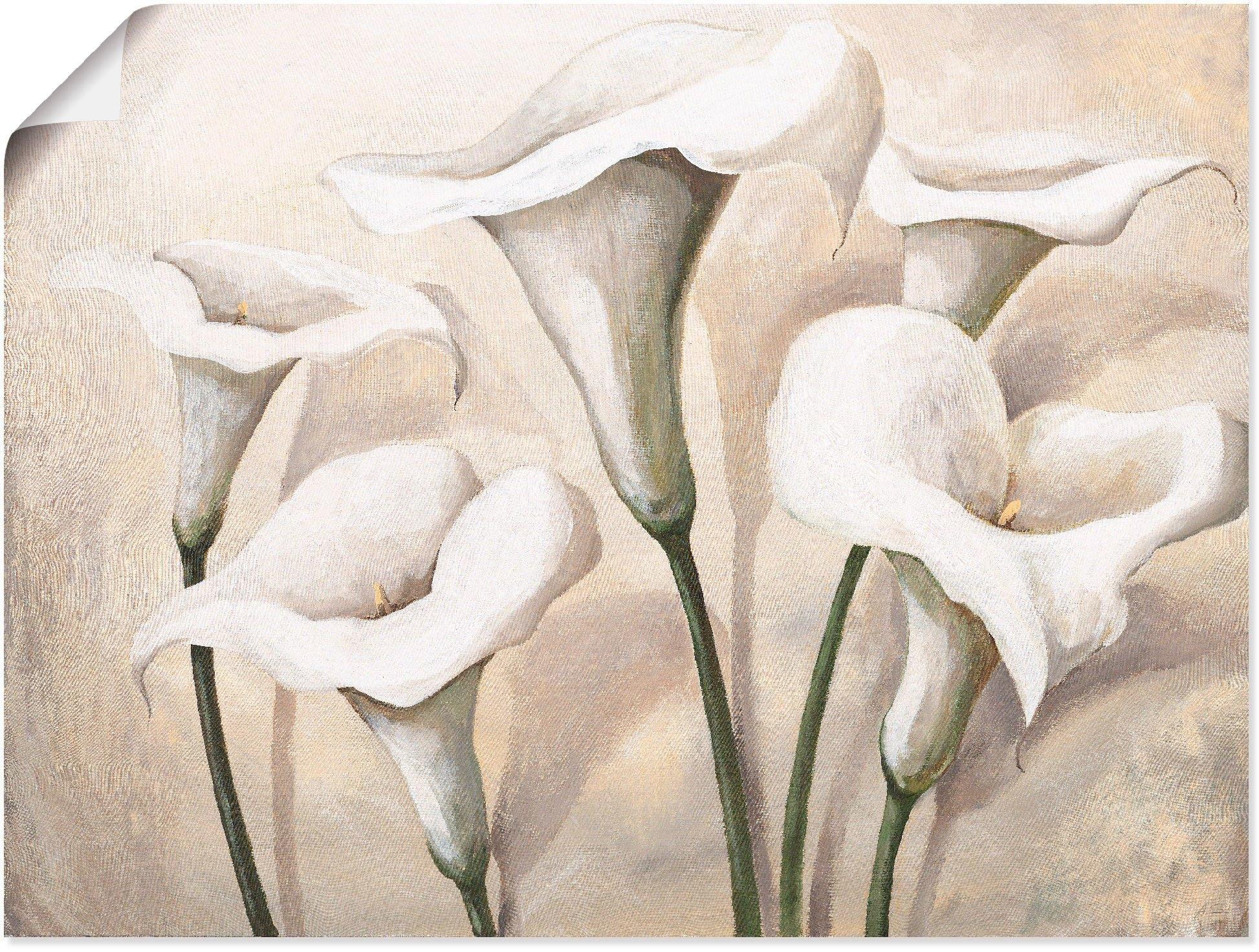Artland artprint Callas I in vele afmetingen & productsoorten - artprint van aluminium / artprint voor buiten, artprint op linnen, poster, muursticker / wandfolie ook geschikt voor de badkamer (1 stuk) goedkoop op otto.nl kopen