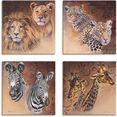 artland artprint op linnen leeuwen luipaarden zebra giraffen (4 stuks) bruin