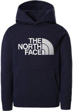 the north face hoodie drew peak kids blauw