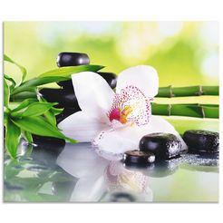 artland keukenwand spa steine bambus zweige orchidee (1-delig) groen