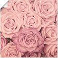 artland artprint rosen in vele afmetingen  productsoorten -artprint op linnen, poster, muursticker - wandfolie ook geschikt voor de badkamer (1 stuk) roze