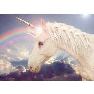 bmd fotobehang »unicorn rainbow« multicolor